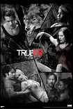 True Blood Poster 1016
