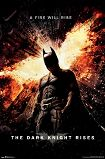 Dark Knight / Fire Will Rise Poster 1077