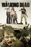 Walking Dead / Attack Poster 1078